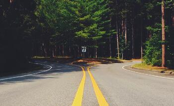 curve-decision-forest-6754